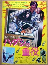 ハダシの重役 国内版B2ポスター